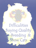 "Click HERE to read, ""The Difficulities of Buying Quality Breeding & Show Cats."""