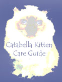 "Click HERE to read ""Catabella's Kitten Care Guide."""
